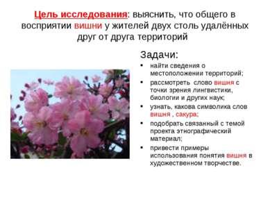 Цель исследования: выяснить, что общего в восприятии вишни у жителей двух сто...