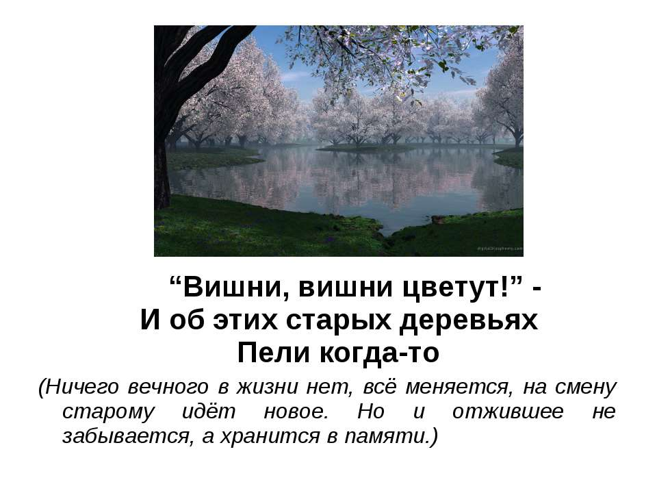 """""""Вишни, вишни цветут!"""" - И об этих старых деревьях Пели когда-то (Ничего вечн..."""