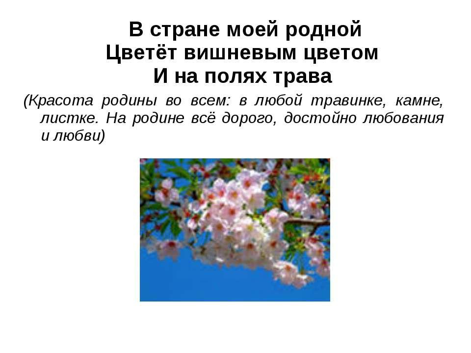 В стране моей родной Цветёт вишневым цветом И на полях трава (Красота родины ...