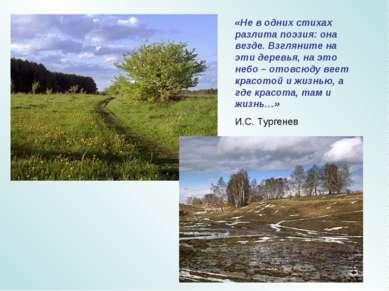 «Не в одних стихах разлита поэзия: она везде. Взгляните на эти деревья, на эт...