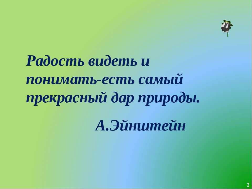 * Радость видеть и понимать-есть самый прекрасный дар природы. А.Эйнштейн