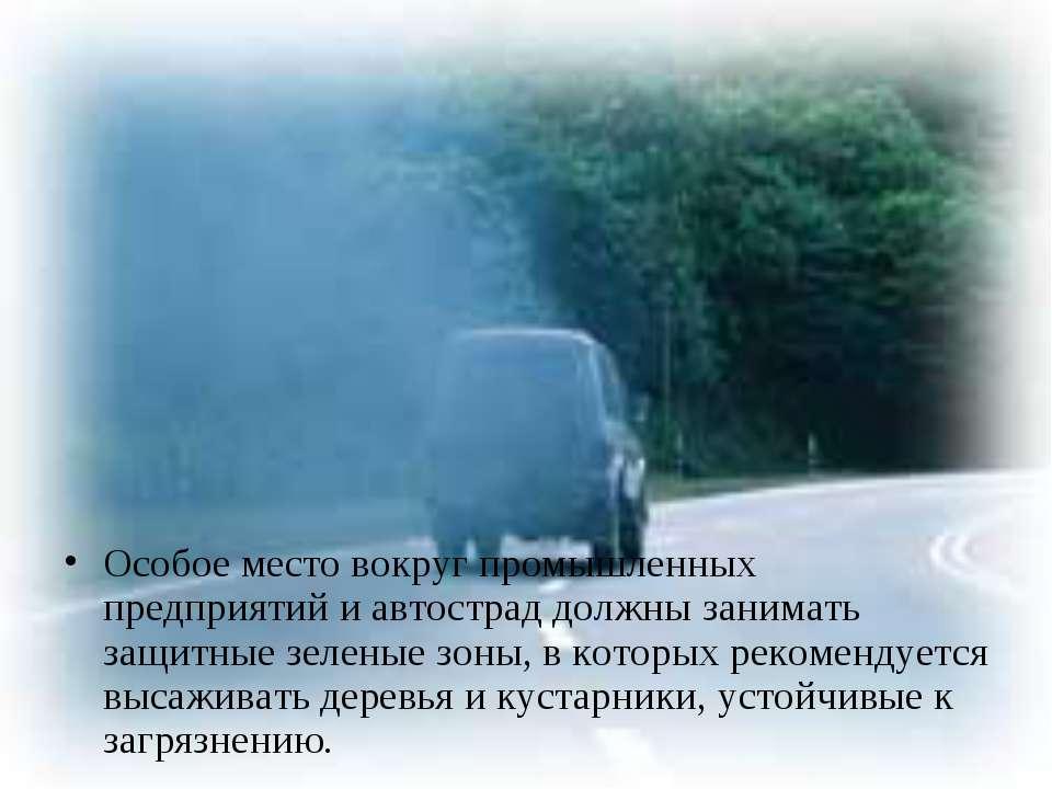 Особое место вокруг промышленных предприятий и автострад должны занимать защи...
