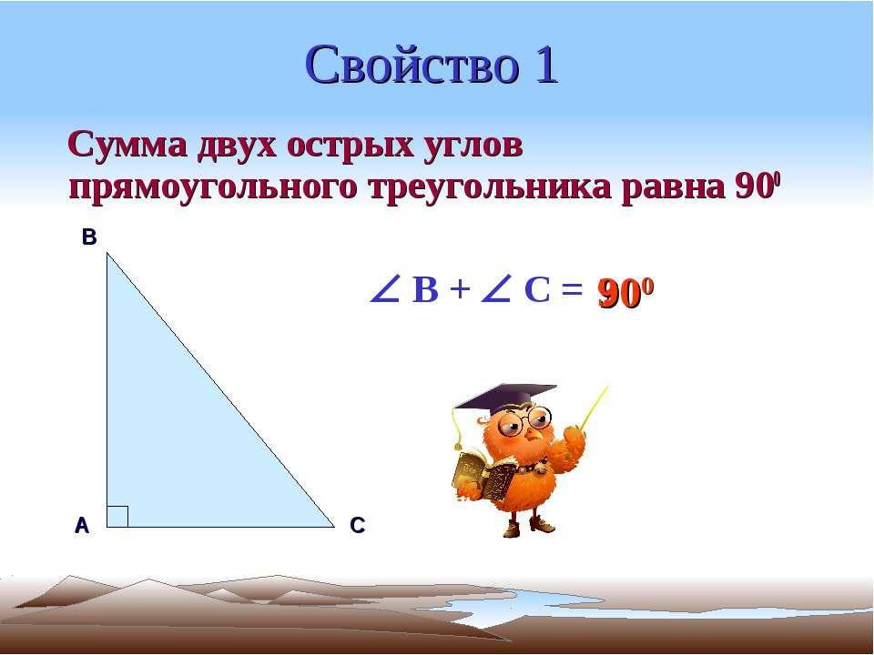 Свойство 1 Сумма двух острых углов прямоугольного треугольника равна 900 А В ...
