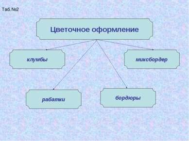 Таб.№2 Цветочное оформление клумбы рабатки миксбордер бордюры