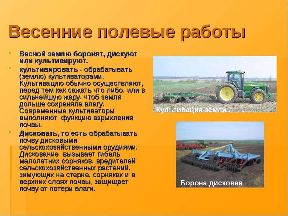 Весенние полевые работы Весной землю боронят, дискуют или культивируют. культ...