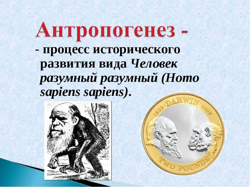 - процесс исторического развития вида Человек разумный разумный (Homo sapiens...