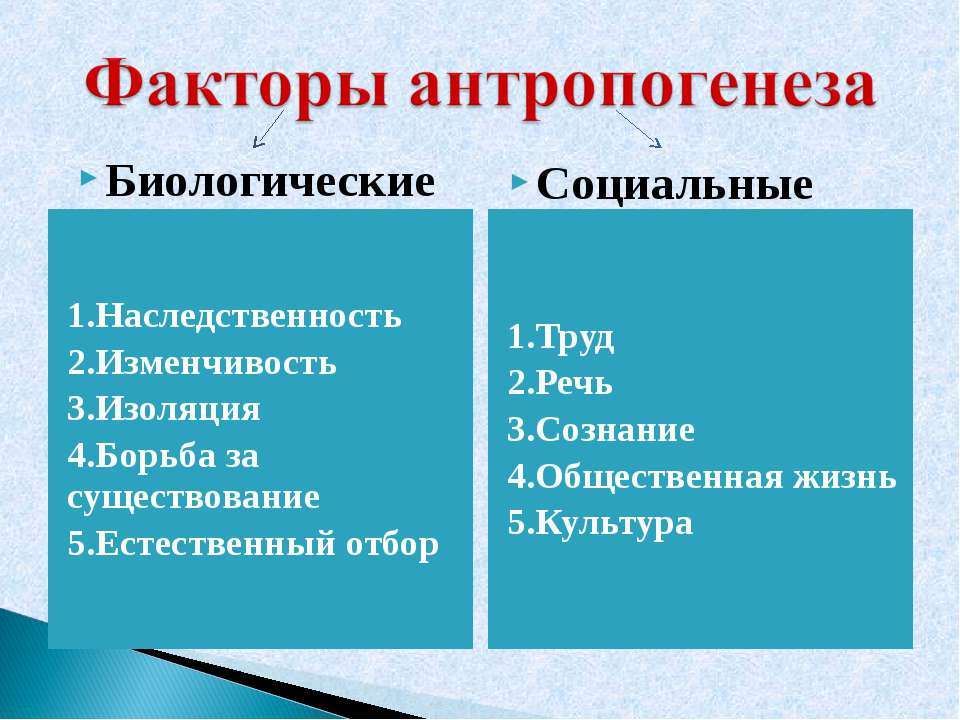 1.Наследственность 2.Изменчивость 3.Изоляция 4.Борьба за существование 5.Есте...