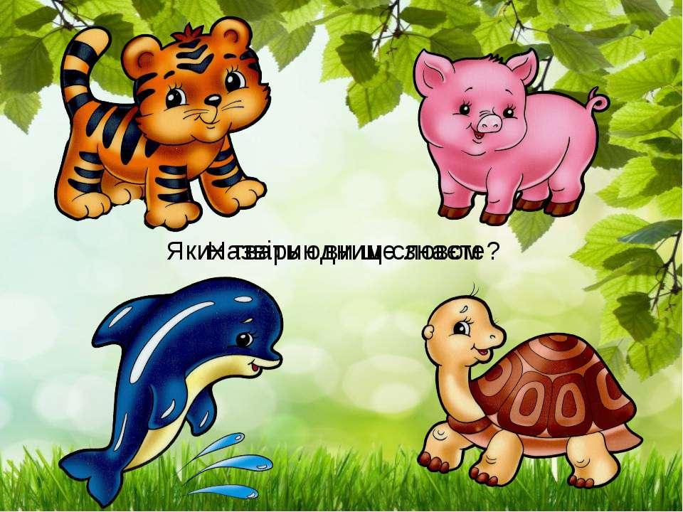 Назвіть одним словом Яких тварин ви ще знаєте?