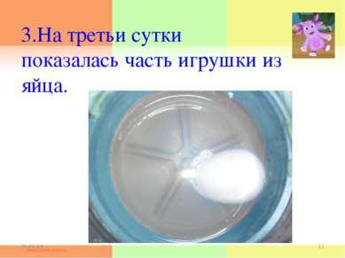 3.На третьи сутки показалась часть игрушки из яйца. * *