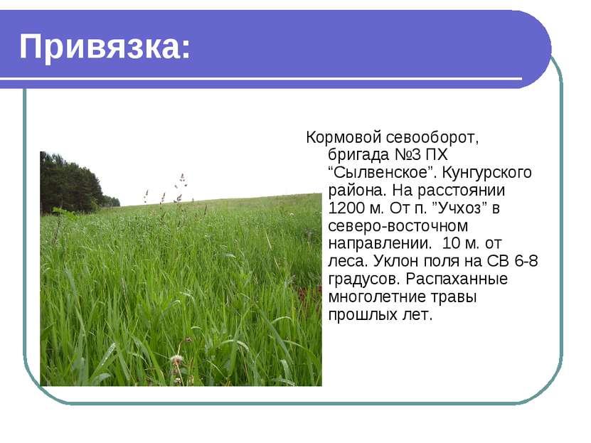 """Привязка: Кормовой севооборот, бригада №3 ПХ """"Сылвенское"""". Кунгурского района..."""