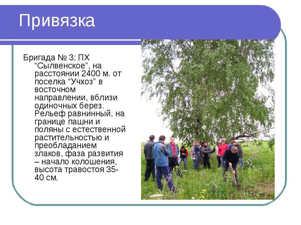 """Привязка Бригада № 3; ПХ """"Сылвенское"""", на расстоянии 2400 м. от поселка """"Учхо..."""