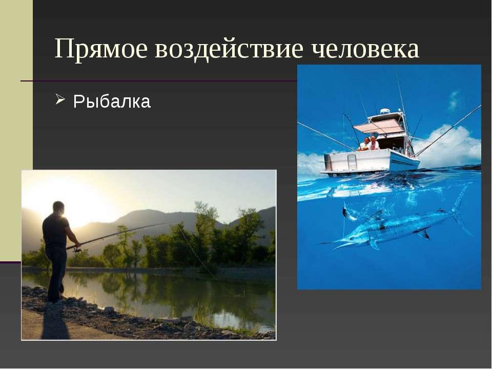 Прямое воздействие человека Рыбалка