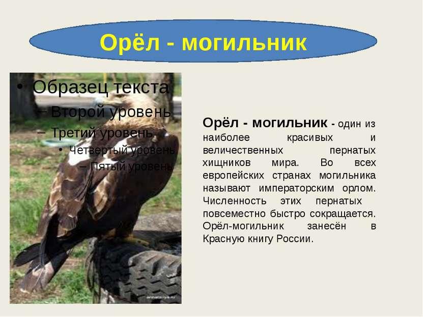 Орёл - могильник Орёл - могильник - один из наиболее красивых и величественны...