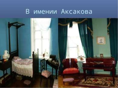 В имении Аксакова