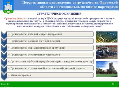 Перспективные направления сотрудничества Орловской области с потенциальными б...