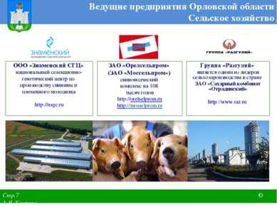 ЗАО «Орелсельпром» (ЗАО «Моссельпром») свиноводческий комплекс на 108 тысяч г...