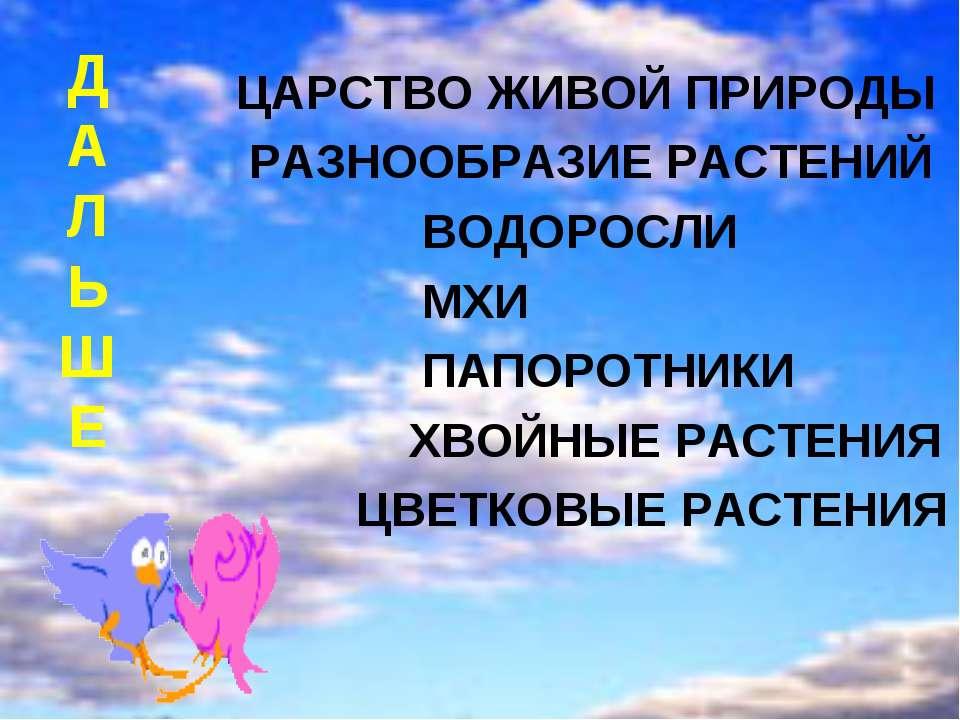 Д А Л Ь Ш Е ЦАРСТВО ЖИВОЙ ПРИРОДЫ РАЗНООБРАЗИЕ РАСТЕНИЙ ВОДОРОСЛИ МХИ ПАПОРОТ...