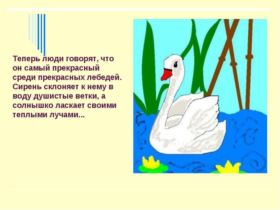 Теперь люди говорят, что он самый прекрасный среди прекрасных лебедей. Сирень...
