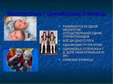 Монозиготные ( однояйцовые) близнецы РАЗВИВАЮТСЯ ИЗ ОДНОЙ ЯЙЦЕКЛЕТКИ, ОПЛОДОТ...