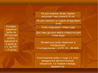 Условия хранения рыбы на ПРГдлительность хранения 5-6 дней (в т.ч. на ПРГ – 2...