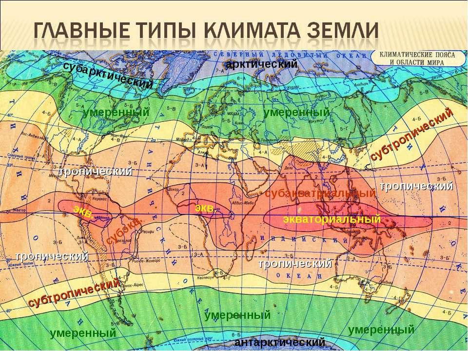 Приурочены к климатическим поясам – зонам, опоясывающим землю по окружности (...