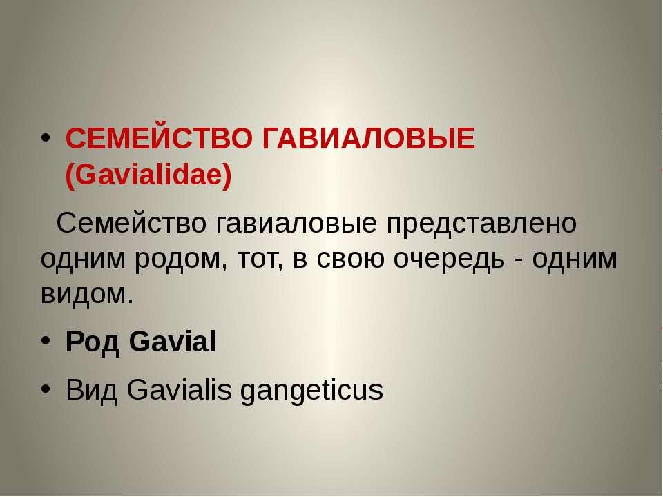 СЕМЕЙСТВО ГАВИАЛОВЫЕ (Gavialidae) Семейство гавиаловые представлено одним род...