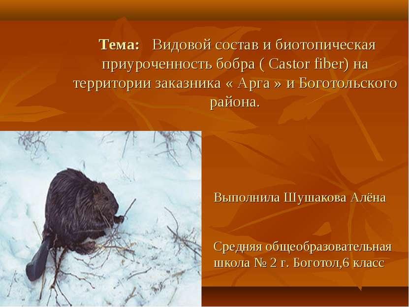 Тема: Видовой состав и биотопическая приуроченность бобра ( Castor fiber) на ...