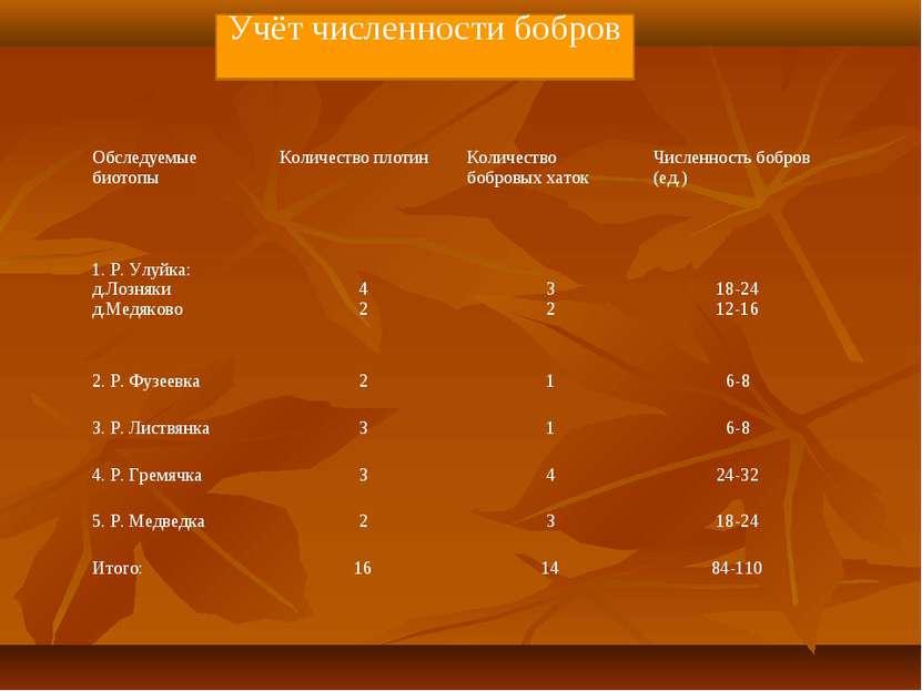 Учёт численности бобров Обследуемые биотопы Количество плотин Количество бобр...