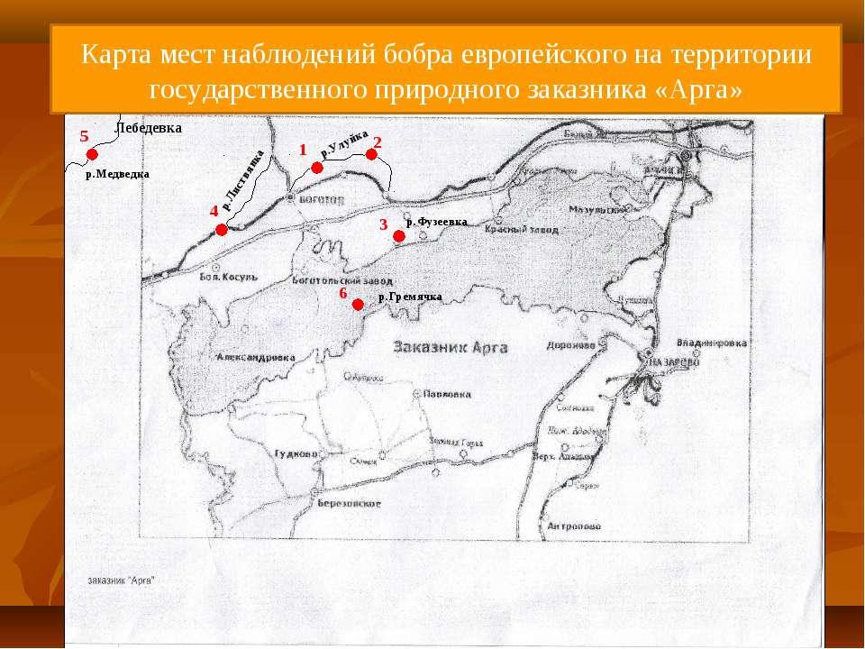 Карта мест наблюдений бобра европейского на территории государственного приро...