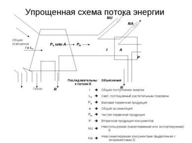 Упрощенная схема потока энергии