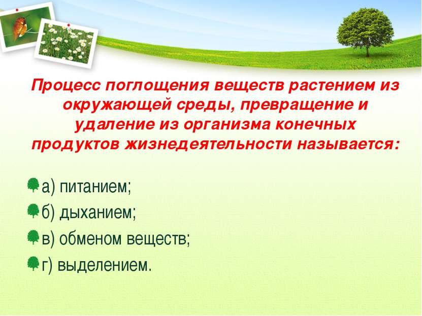 Процесс поглощения веществ растением из окружающей среды, превращение и удале...