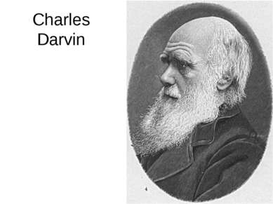 Charles Darvin