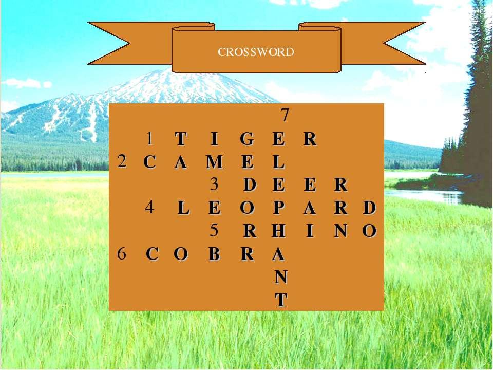 CROSSWORD      7    1 T I G E R   2 C A M E L       3 D E E ...