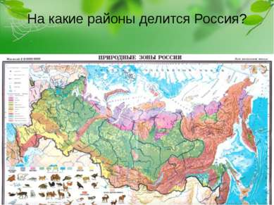 На какие районы делится Россия?