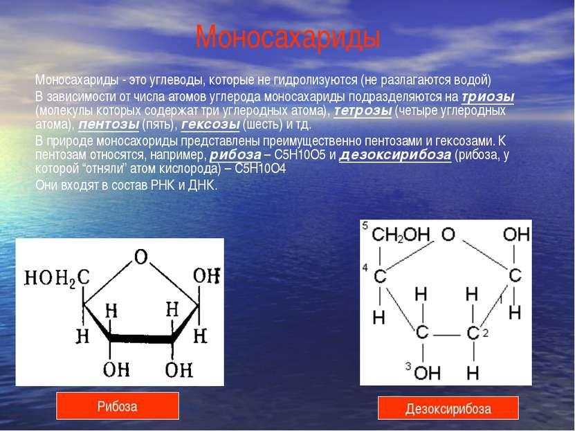 Моносахариды Моносахариды - это углеводы, которые не гидролизуются (не разлаг...