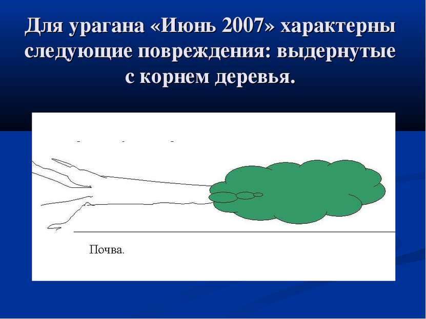Для урагана «Июнь 2007» характерны следующие повреждения: выдернутые с корнем...