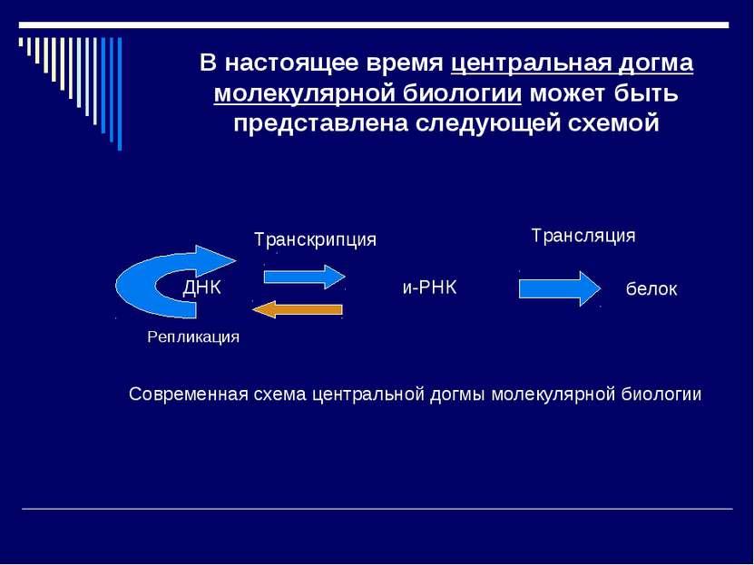 В настоящее время центральная догма молекулярной биологии может быть представ...