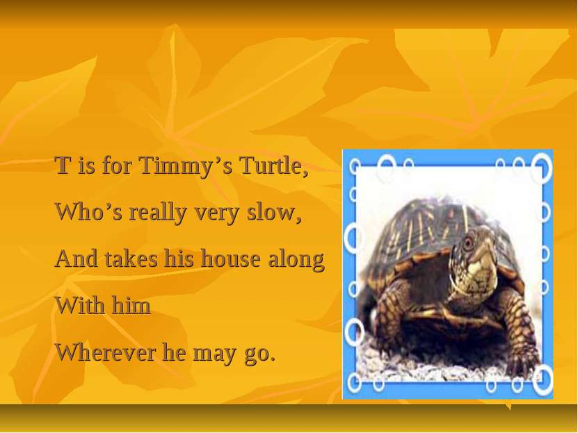 T is for Timmy's Turtle, Who's really very slow, And takes his house along Wi...