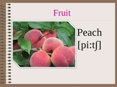 Fruit Peach [pi:t∫]
