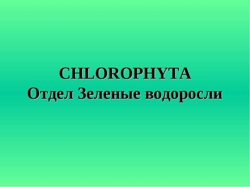 CHLOROPHYTA Отдел Зеленые водоросли
