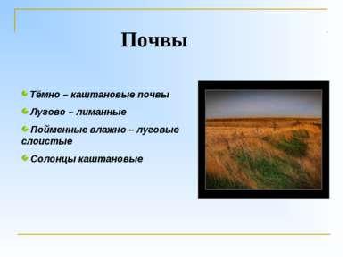 Тёмно – каштановые почвы Лугово – лиманные Пойменные влажно – луговые слоисты...