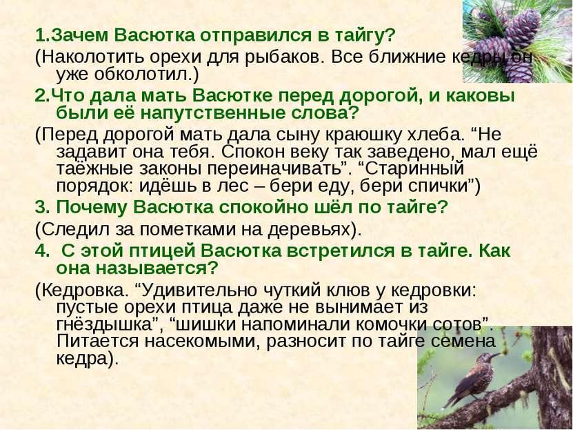 1.Зачем Васютка отправился в тайгу? (Наколотить орехи для рыбаков. Все ближни...