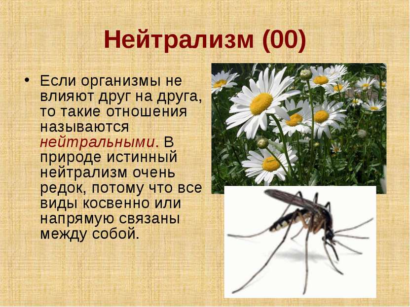 Нейтрализм (00) Если организмы не влияют друг на друга, то такие отношения на...