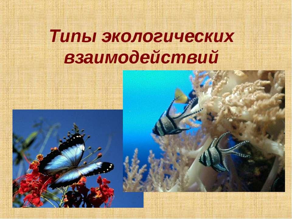 Типы экологических взаимодействий