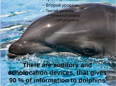 There are auditory and echolocation devices, that gives 90 % of information t...