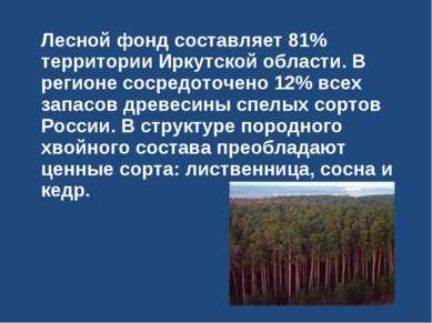 Лесной фонд составляет 81% территории Иркутской области. В регионе сосредоточ...