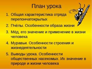 Пчёлы – общественные насекомые Около 20 тыс. видов Распространенны повсеместн...