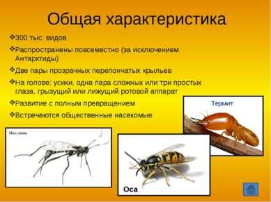 Особенности жизнедеятельности пчел Танцы пчел Роение