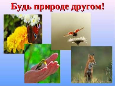 Будь природе другом!