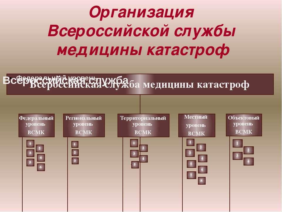 Организация Всероссийской службы медицины катастроф